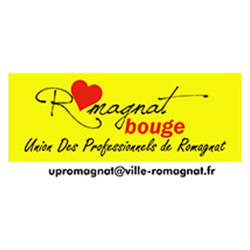 UNION DES PROFESSIONNELS DE ROMAGNAT (U.P.R.)
