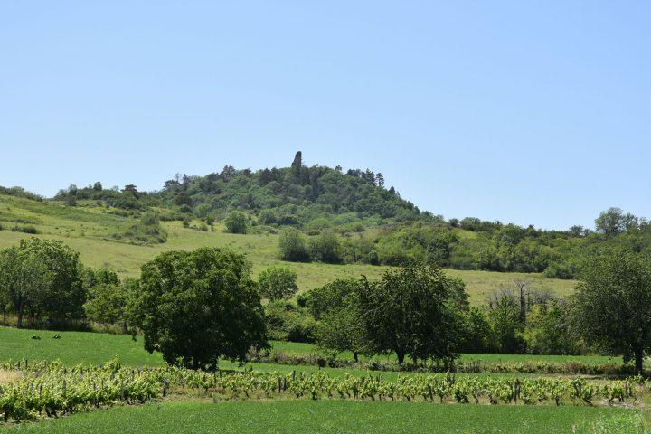 Le château de Montrognon et les vignes du puy de Chomontel