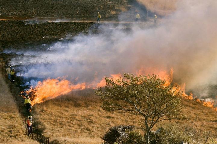 Les feux de plein air et l'écobuage sont réglementés