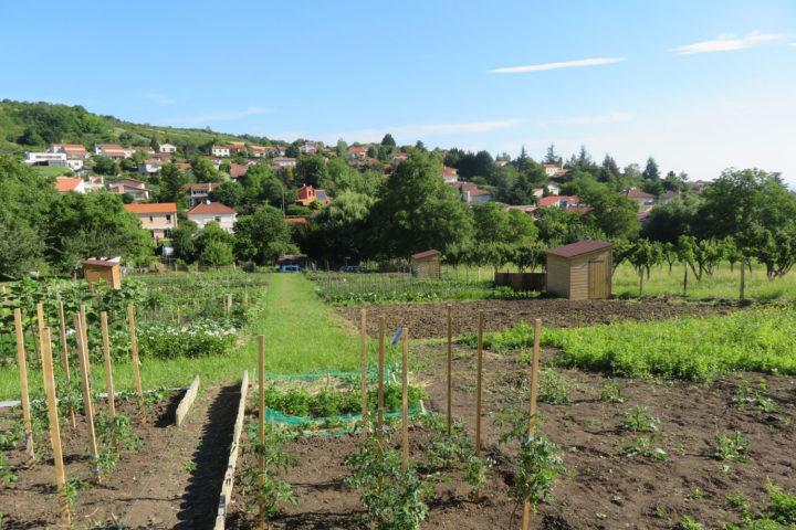 Les jardins familiaux de Romagnat