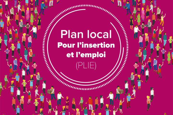 Logo du Plan Local pour l'Insertion et l'Emploi