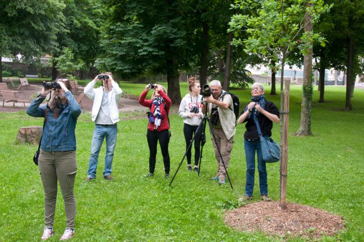 Le LPO organise des visites commentées pour découvrir les oiseaux du Parc