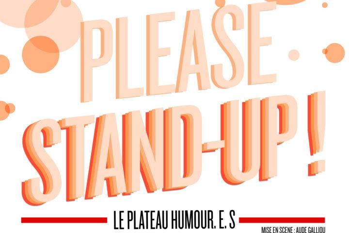 Please-Stand-Up-festival de l'humour